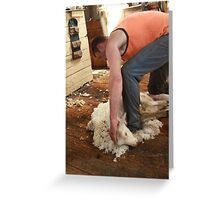 Click go the shears boys! Greeting Card