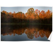 Fading Autumn Light Poster
