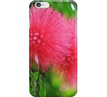 Happy Birthday greeting card and gifts (silk flower) iPhone Case/Skin