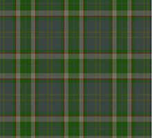 00102 Bahamas District Tartan by Detnecs2013