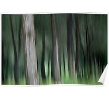 Trees in the trulli forest  Poster
