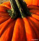 Big Pumpkin by Marcia Rubin