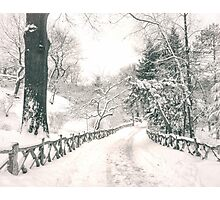 Central Park Winter Path Photographic Print