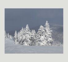 Beautiful mountaintop snowscape T-Shirt