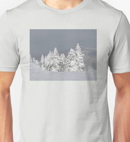 Beautiful mountaintop snowscape Unisex T-Shirt