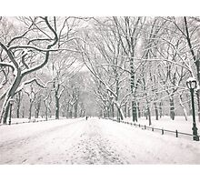 Central Park - Poet's Walk - New York City Photographic Print
