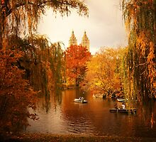 Autumn - Central Park - New York City by Vivienne Gucwa