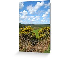 Langdale Forest Greeting Card