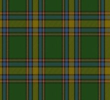 00105 Alberta District Tartan  by Detnecs2013