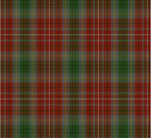 00106 British Columbia District Tartan  by Detnecs2013