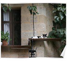 Greek Cat, Lindos Poster