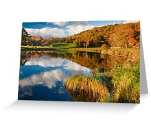 Autumn on the river Brathay Greeting Card