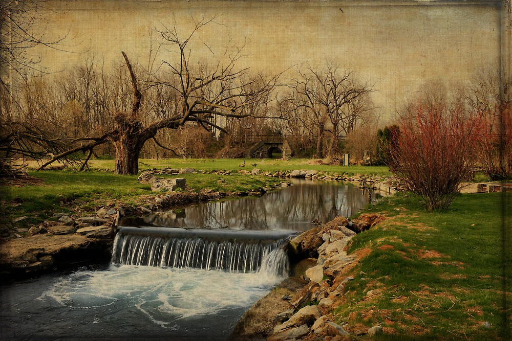 A stream somewhere in Pennsylvania by Jean-Pierre Ducondi