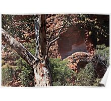 Natures paintbrush in the Outback Poster