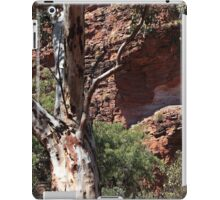 Natures paintbrush in the Outback iPad Case/Skin