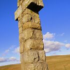 Dartmoor: Crosses Series - Widgery's by Rob Parsons