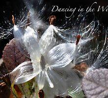 Dancing in the Wind by Jodie Keefe
