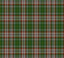 00112 Fredericton District Tartan  by Detnecs2013