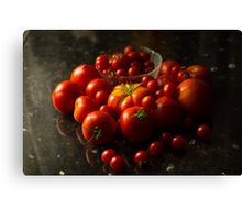 Fresh Tomatoes Canvas Print