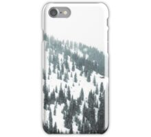 Tones – Cabin iPhone Case/Skin