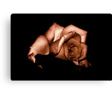 STRONG ROSE Canvas Print