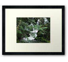 Koksilah River Falls Framed Print