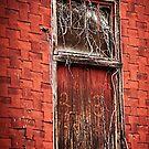 Old Rail Way Door by KFuoco