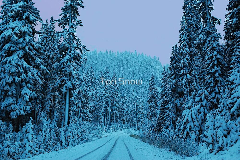 Scenic Snowy Drive by Tori Snow