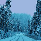 Scenic Snowy Drive by Tori Snow