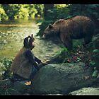 Bear and bear by AlexandraSophie