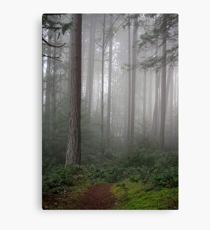 Going Canvas Print