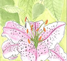 Stargazer Lily Watercolour Pattern by SugarMouseArts