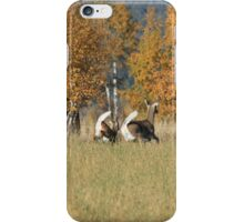 white tails iPhone Case/Skin