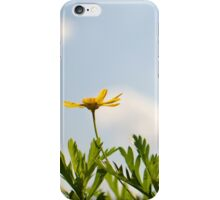 Spring...in the air! iPhone Case/Skin