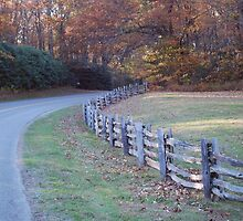 Virginia Country Road by wynnsfalls