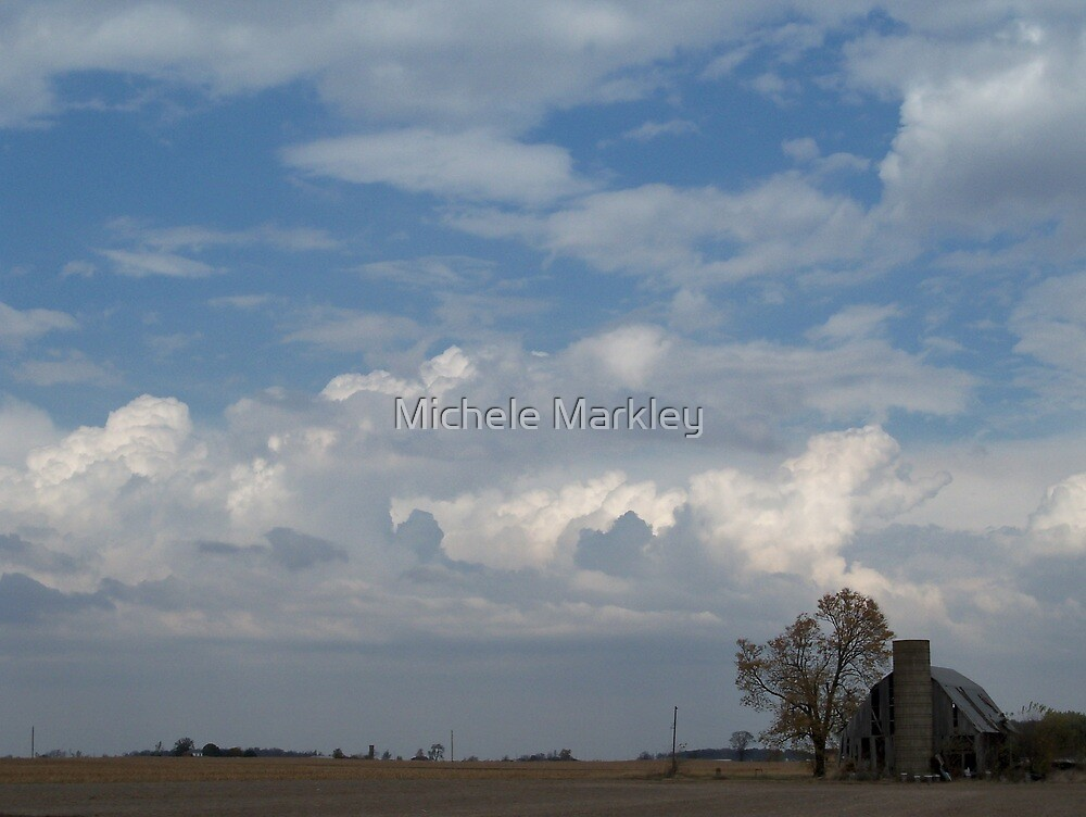 Rural Indiana by Michele Markley