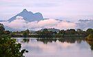 Mt Warning morning reflections by Odille Esmonde-Morgan