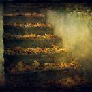 Autumn stairs by Morten Kristoffersen