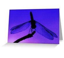 Dragonfly at Dusk - Blank Greeting Card Greeting Card