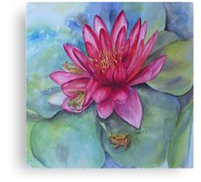 Hide and seek in the Water Lilly Canvas Print