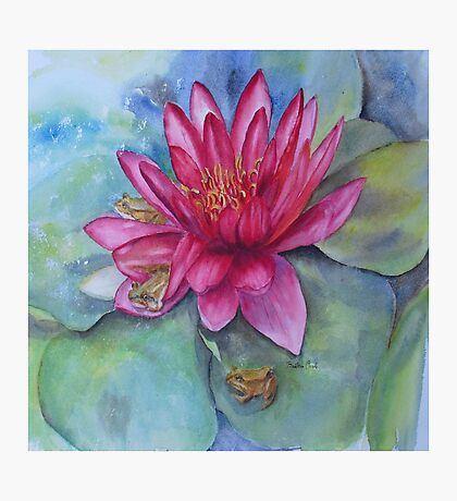Hide and seek in the Water Lilly Photographic Print