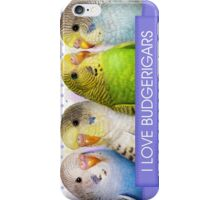 Budgerigars realistic painting iPhone Case/Skin