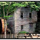 The Old Water Mill by lynell