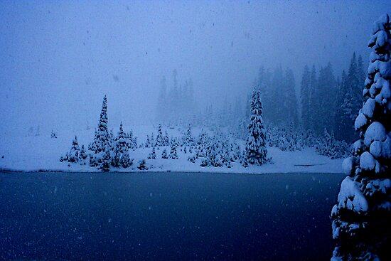 Blizzard! by skreklow