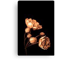 """Sepia Rose"" Canvas Print"