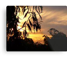 Bush Sunset on the Tweed River. Metal Print
