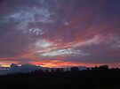 Sunrise  by Odille Esmonde-Morgan
