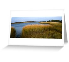 This Land was Made for You and Me Greeting Card