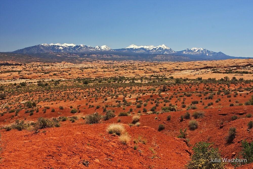 Red Desert by Julia Washburn