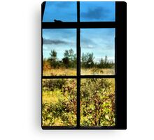 Grass is always greener on the other side Canvas Print